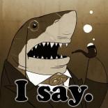 Shark - I say!