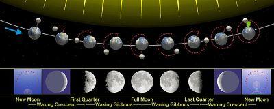 Moon_phases_en