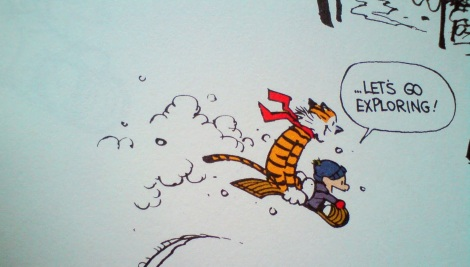 Calvin-and-Hobbes-DSC00197
