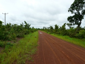 Road to Bimbilla